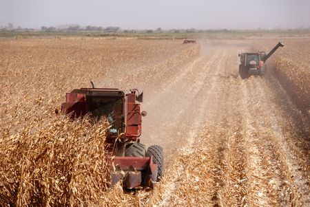 san joaquin valley: Combines harvesting corn, San Joaquin Valley, California Stock Photo