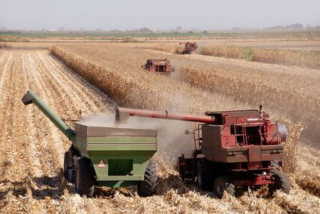 san joaquin: Combines harvesting corn, San Joaquin Valley, California Stock Photo