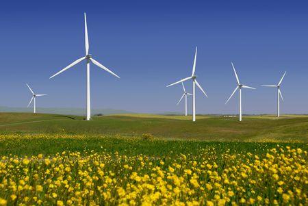 硬直した白い電気発電風車、緑の小麦と黄色の野生の花、リオ Vista、カリフォルニア州のローリングヒルズでタービン 写真素材