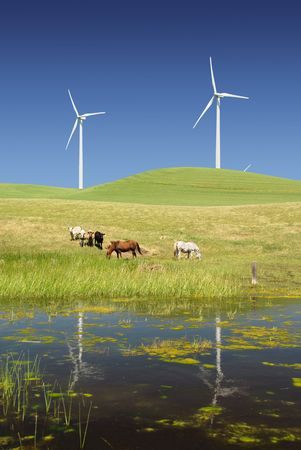 Reflection of Stark White Electrical Power Generating Windmills, Turbines on Rolling Hills of Green, Livestock, Cattle, Horses, Rio Vista, California Stock fotó - 4891142