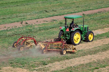 san joaquin: Tractor raking cut alfalfa in preparation for bailing.