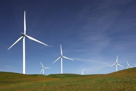 Stark white power generating wind turbines behind flowered green pasture and blue skies. photo
