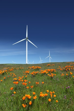 Stark white power generating wind turbines behind orange California poppies, green pasture, and blue skies.