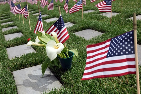 Amerikaanse vlaggen en bloemen te zien in een Amerikaanse National Military Cemetery Stockfoto