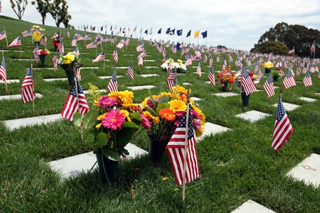 military cemetery: American Flags and floral display at an American National Military Cemetery Stock Photo
