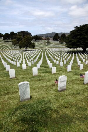 military cemetery: Headstones and Flags at American National Military Cemetery