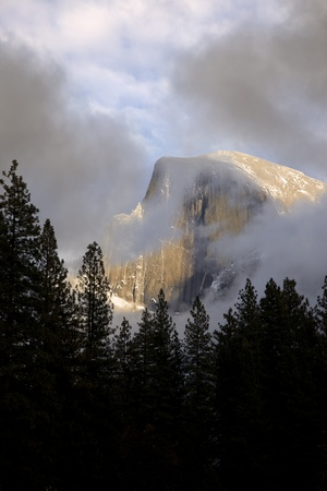 sierra snow: Half Dome and silhouetted pine trees, in clouds, Yosemite Valley National Park