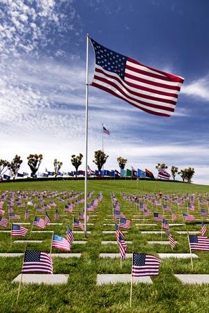 Grafstenen en vlaggen bij American National Military Cemetery