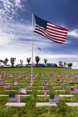 Headstones and Flags at American National Military Cemetery