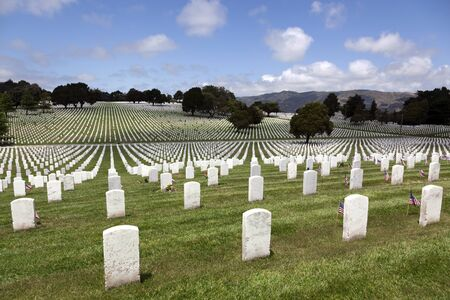 Headstones and Flags at American National Military Cemetery photo