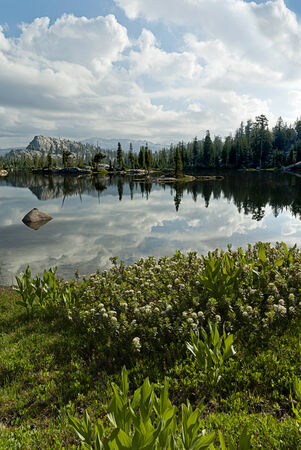 emigrant: Summer mountain lake reflection with granite, trees, Emigrant Wilderness, Stanislaus National Forest, California Stock Photo