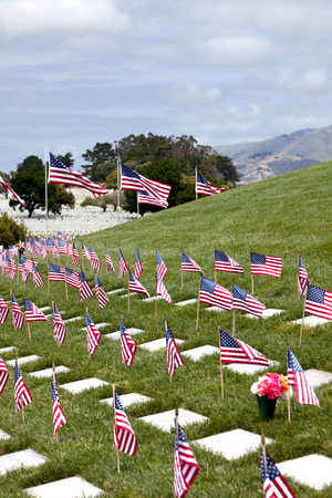 national military cemetery: Headstones and American Flags at National Military Cemetery