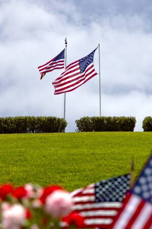 military cemetery: American Flags at National Military Cemetery