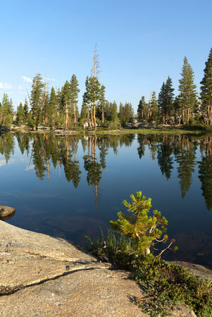 Summer mountain lake reflection with granite, trees, Emigrant Wilderness, Stanislaus National Forest, California Banco de Imagens