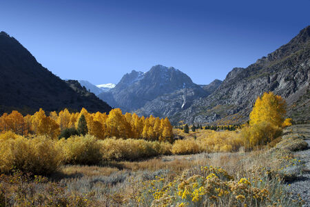 Rugged mountains and aspens, Fall, Eastern Sierra Nevada, California