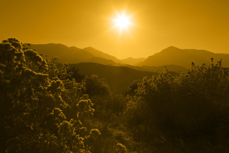 Several layers of mountain ranges stacked in Yellow silhouette, rabbit brush in foreground  Stock Photo