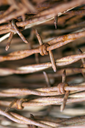 Extreme closeup of rusty roll of barbed wire.