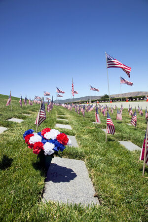American flags, headstones, flowers, and flying Coffin Flags, each one once presented at military funeral service