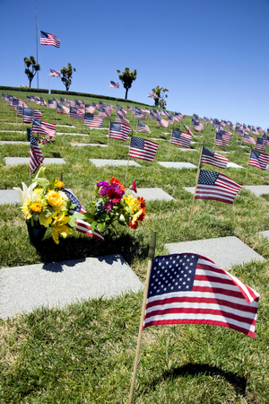 American flags, headstones, flowers, and Coffin Flags flying at half mast, each once presented at military funeral service  Banco de Imagens