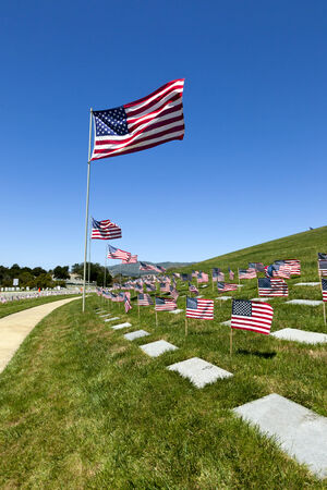 American flags, headstones, flowers, and flying Coffin Flags, each once presented at military funeral service