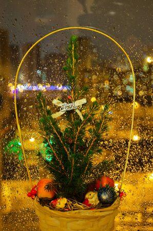 firtree: Christmas fir-tree, New Year and Christmas Stock Photo