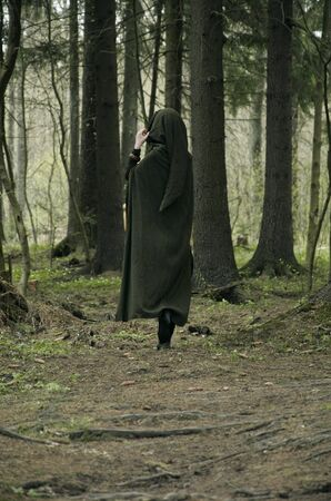 dressing up costume: elf deep in forest, image of a forest witch