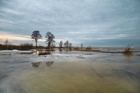 morass: Bay shore, melting ice in the swamp, winter twilight