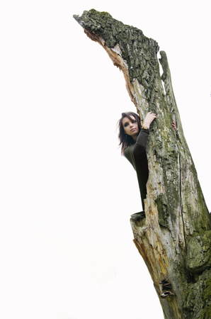 heathen: witch on the old tree on white background Stock Photo