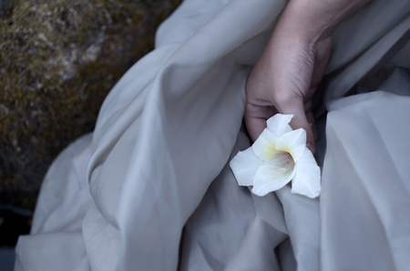 thin female hand holds a white gladiolus flower over a gray cloth