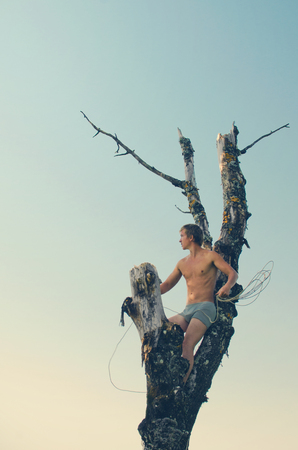 guy without a shirt was Sarbala high on a dead tree, sat down between the boughs and waving gripped in the hands of a rope