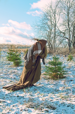 Brokeback wicked witch wanders in winter through a forest of young firs