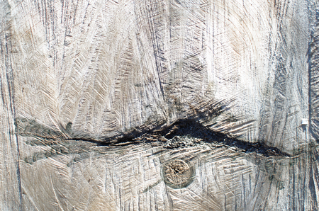 background image of old tree cut close-up