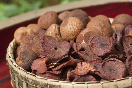 Dry Betel nuts or Areca nuts