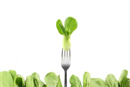 rapa: Bok choy  chinese cabbage  isolated on white Stock Photo