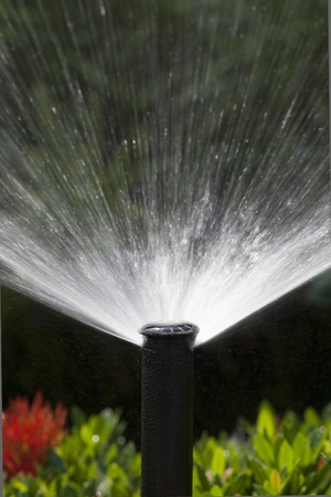 sprinklers: sprinkler head watering the bush and grass Stock Photo