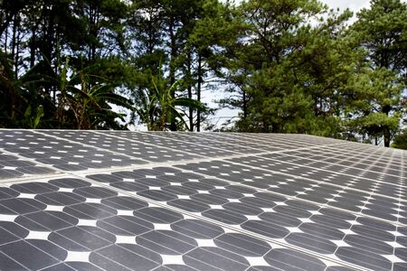 Solar cell panel in forest photo