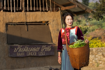 MAEHONGSON, THAILAND - FEB 12 :  Earthen House village,  Lisu Hill tribe girl in traditional costume with her vegetable from garden in morning on Feb 12, 2011 in Maehongson, Thailand. Editorial