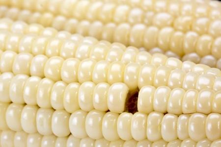 Corn texture one grain lost