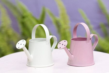 farming tools: Small two watering can Stock Photo