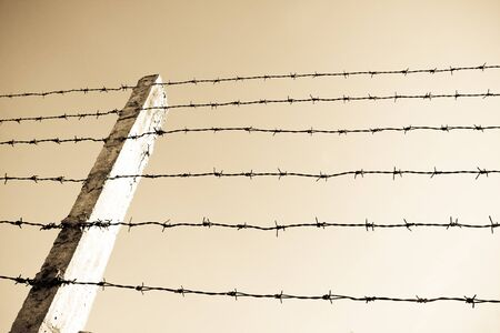 barbwire: Barb wire fence