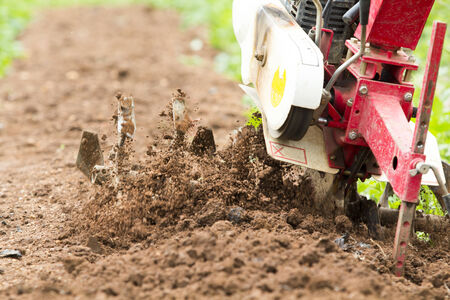 Small rotary cultivator working in garden