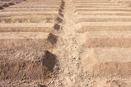 organics: Preparation Of Soil Ready For Planting Vegetable Stock Photo