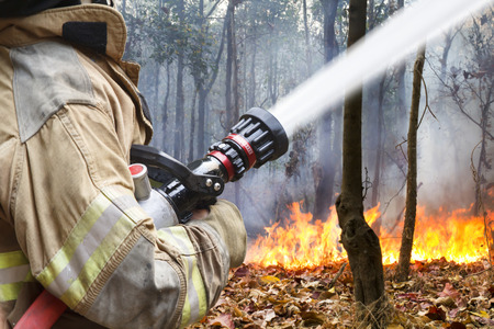 forest fire: firefighters helped battle a wildfire  Stock Photo