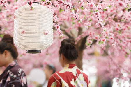 tokyo prefecture: Japanese lantern Stock Photo