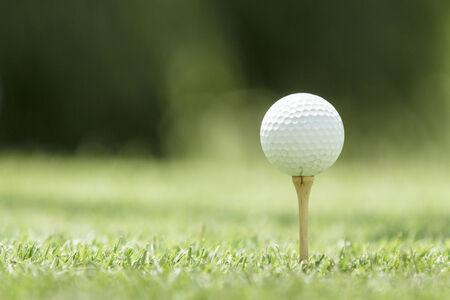Golf ball on a tee  photo