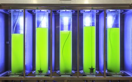 biofuel: Photobioreactor in lab algae fuel biofuel industry Stock Photo