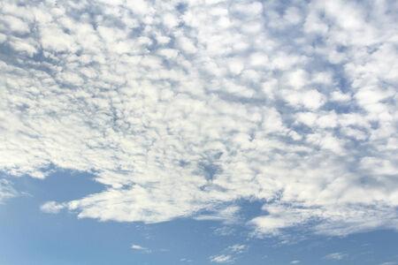 altocumulus: altocumulus clouds