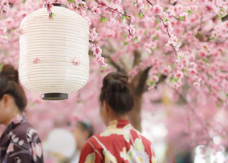 tokyo prefecture: japanese lantern