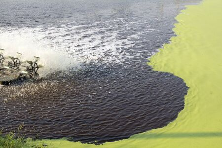implement: Wastewater Treatment Using Duckweed. This technology is inexpensive to construct and operate, and easy to implement.