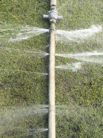leakage: wasting water - water leaking from a hole in a hose